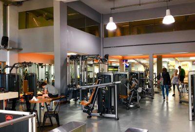 Musculación 2