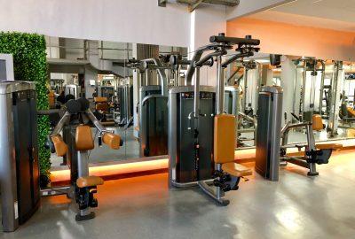 Musculación 7