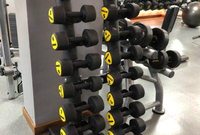 Musculación 9